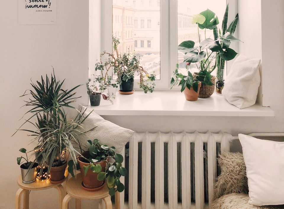 4 Ways to Make Your Home More Sustainable